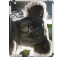 Cute baby koala with sunlight glow iPad Case/Skin