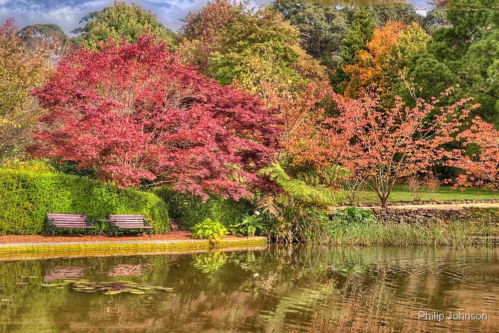 Secret Garden - Mount Wilson  # 8 , NSW Australia - The HDR Experience by Philip Johnson