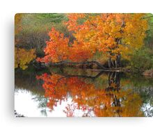 Autumn tree branch on water Canvas Print