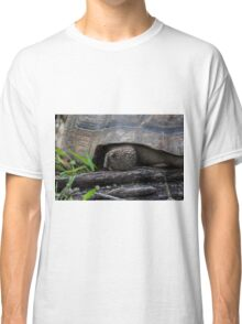 Galapagos Tortoise. Classic T-Shirt