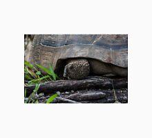 Galapagos Tortoise. Classic T-Shirt