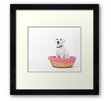 White Lab Puppy Framed Print
