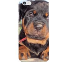 Female Rottweiler Puppy Photographic Portrait iPhone Case/Skin