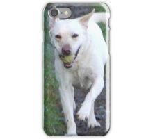 Golden labrador iPhone Case/Skin