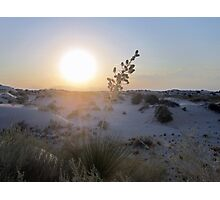 White Sunset Photographic Print