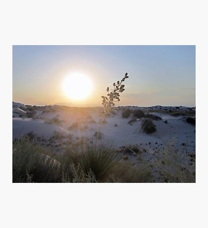 White Sunset Photographic Print