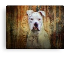 Homey don't play that!!! Canvas Print