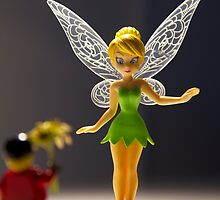 Tinkerbell...will you marry me? by BertRito