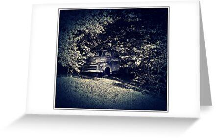 Hidden Amongst The Trees by Paul Lubaczewski