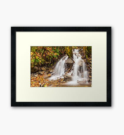 Un-named mountain stream in the Beckler River Valley Framed Print