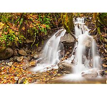 Un-named mountain stream in the Beckler River Valley Photographic Print