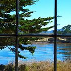 View from the Whalers Cabin - Point Lobos, CA by hanforddennis
