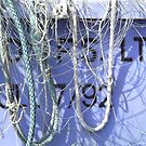 Ropes And Nets Bridlington 3 by gailmiller