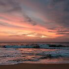 Sunset In Sri Lanka by Andrew Lever