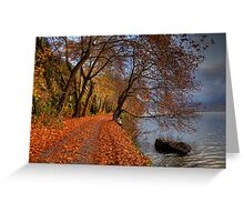 Leaves like snow on road.... Greeting Card