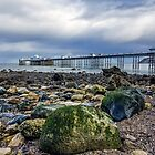 135 Llandudno Pier, North Wales by George Standen