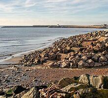 November Seascape 4 - Lyme Regis by Susie Peek