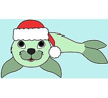 Light Green Baby Seal with Christmas Red Santa Hat Photographic Print