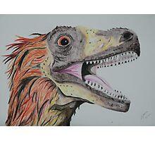 Feathered Dinosaur Photographic Print