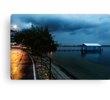 Lonely in the Night Canvas Print