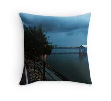Lonely in the Night Throw Pillow
