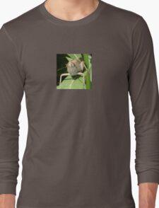 Grasshopper on An Oleander Leaf T-Shirt