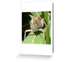 Grasshopper on An Oleander Leaf Greeting Card