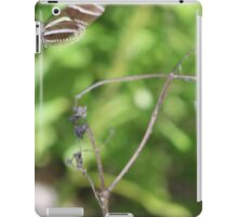 Zebra Longwing Butterfly (Heliconius charitonius) iPad Case/Skin