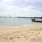 Grenada Beach Panorama by John Dalkin