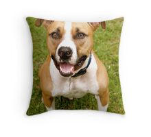 Yes, I Know I'm Handsome Throw Pillow