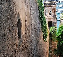 Going Down; Going Up-Porto Ercola, Tuscany by Deborah Downes