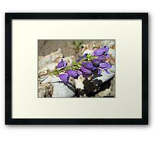 Purple Joy Framed Print