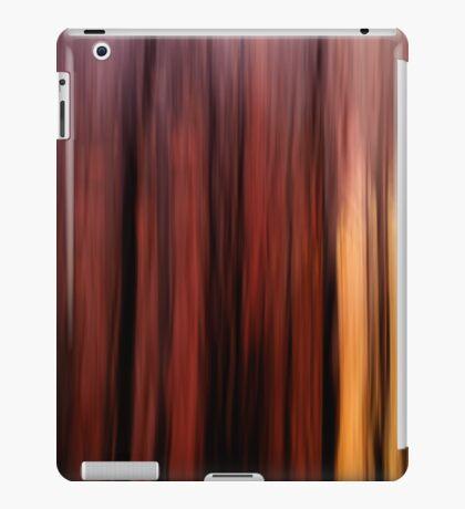 Winter Forest Sunset iPad Case/Skin