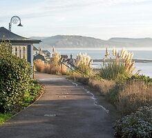 Langmoor-Lister Gardens - Lyme Regis by Susie Peek