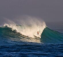 The Art Of Surfing In Hawaii 6 by Alex Preiss