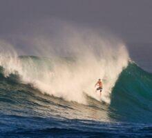 The Art Of Surfing In Hawaii 6 Sticker