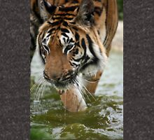 Tiger in the wet Unisex T-Shirt