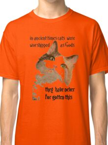 In Ancient Times Cats Were Worshipped As Gods Classic T-Shirt