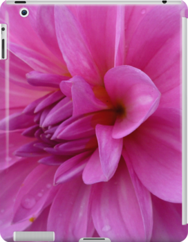 Petals (available in ipad cases) by Jess Meacham