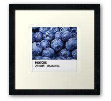 Pantone - Blueberries Framed Print