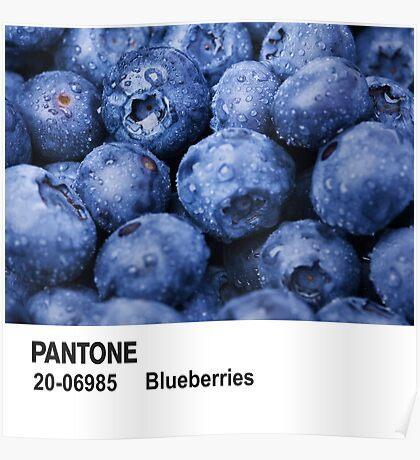 Pantone - Blueberries Poster