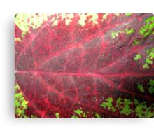 Leaf Me Be Canvas Print