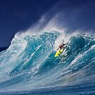 The Art Of Surfing In Hawaii 7 by Alex Preiss