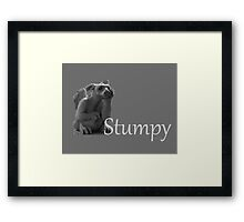 The Librarians Stumpy in greyscale Framed Print