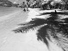 Beach Walkers by globeboater