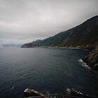via dell amore, Cinque Terre. by JMDasso