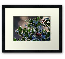 """It's beginning to look a lot like Christmas"" Framed Print"