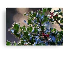 """It's beginning to look a lot like Christmas"" Canvas Print"