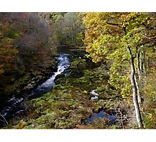 Bolton Abbey Strid Photographic Print