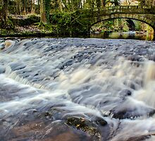Rivelin River Footbridge by John Dunbar